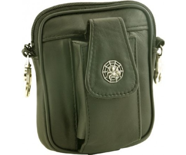 Bag with Spider and Web